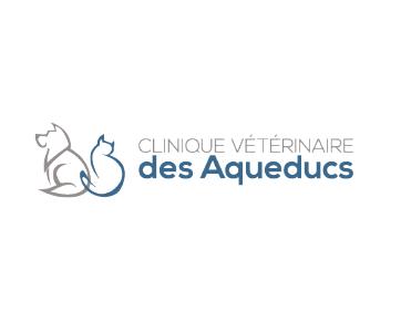 Clinique des aqueducs