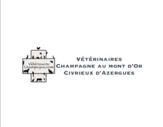 Vétérinaire champagne au mont d'or et civrieux d'azergue